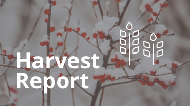 2015.12_harvest-report-featured