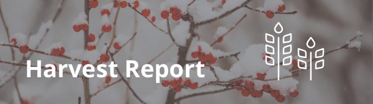 2015.12_harvest-report-main