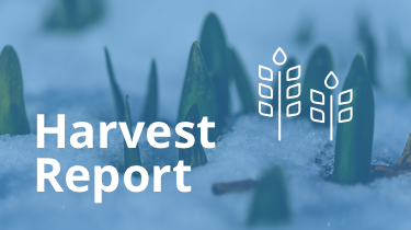 2016.01_harvest-report-featured