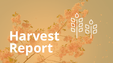2016.04_harvest-report-featured
