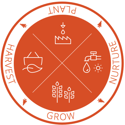 Carrot_Sticker_Seal_2