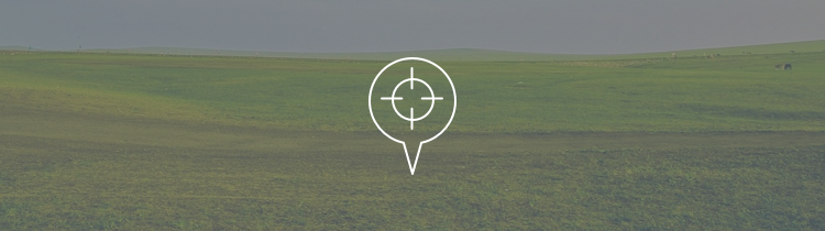 Land Buyer Websites Post Header