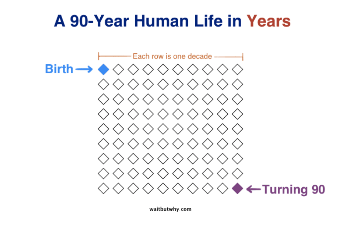 A 90-Year Human Life in Years