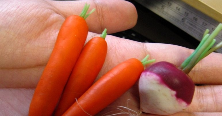 carrotsvsturnip