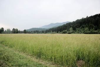 cheap land for sale in