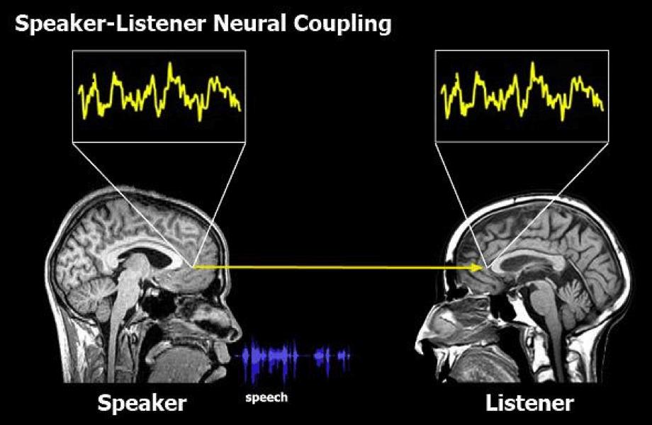 speaker-listener neural coupling