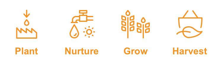 Carrot Lead Generation Plan