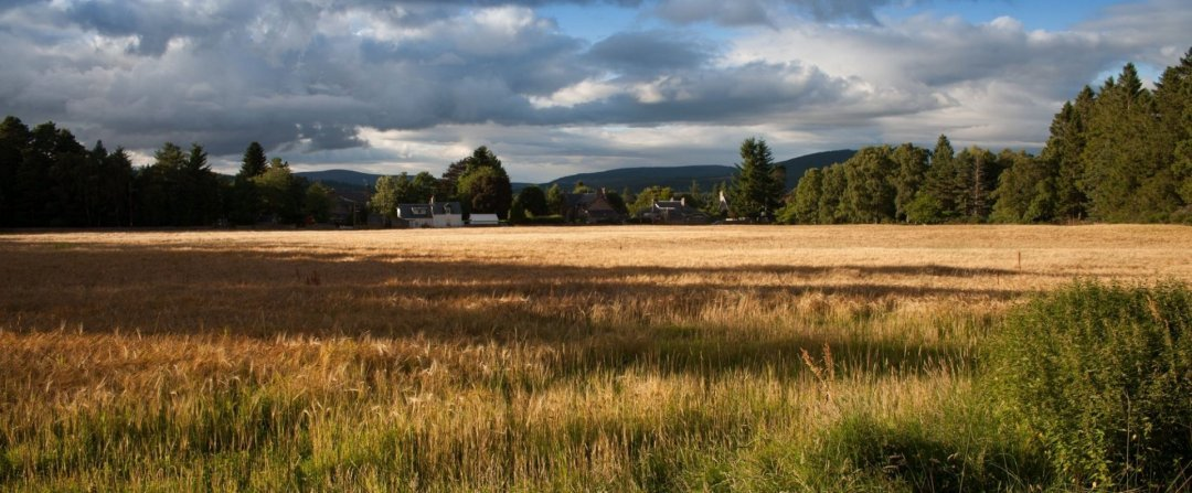 owner financing on land in OR - Carrotburg and surrounding cities