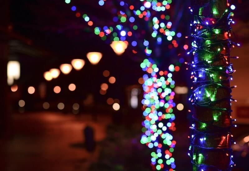 Christmas lights at the Dallas Zoo
