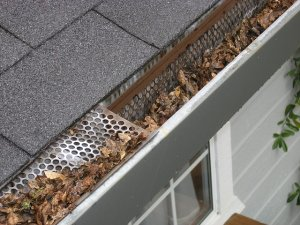 clean gutters to reduce water damage from rain and storms- Long Island
