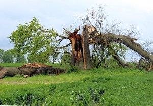 FEMA and flood insurance for a hurricane - Long Island