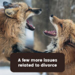 divorce issues