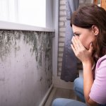 how to sell a house with mold in Memphis TN