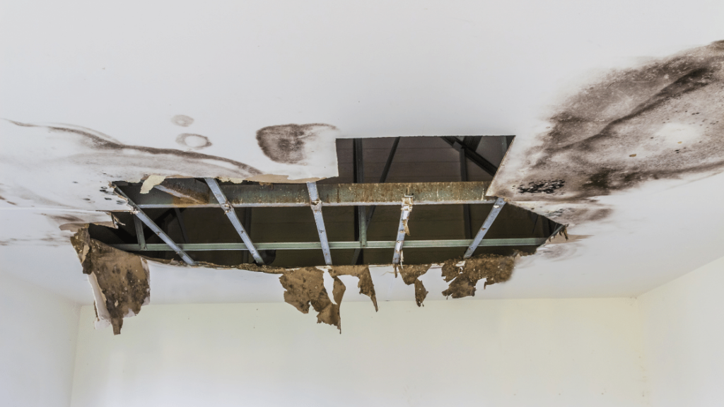Will my insurance cover damage to my home