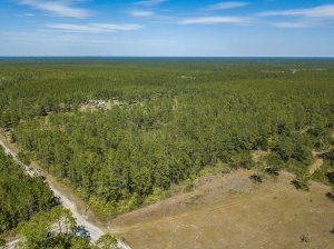 vacant land purchased by My Florida Home Buyers in Clay County Florida