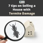 7 Valuable Tips on Selling a House with Termite Damage in Utah