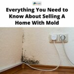 mold in the corner of a room selling a house with mold