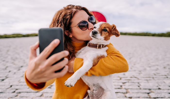 Ways to Make Your Home Pet-Friendly in Huntsville