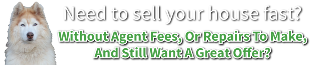 Without Agent Fees, or Repairs to Make, and Still Want A Great Offer?