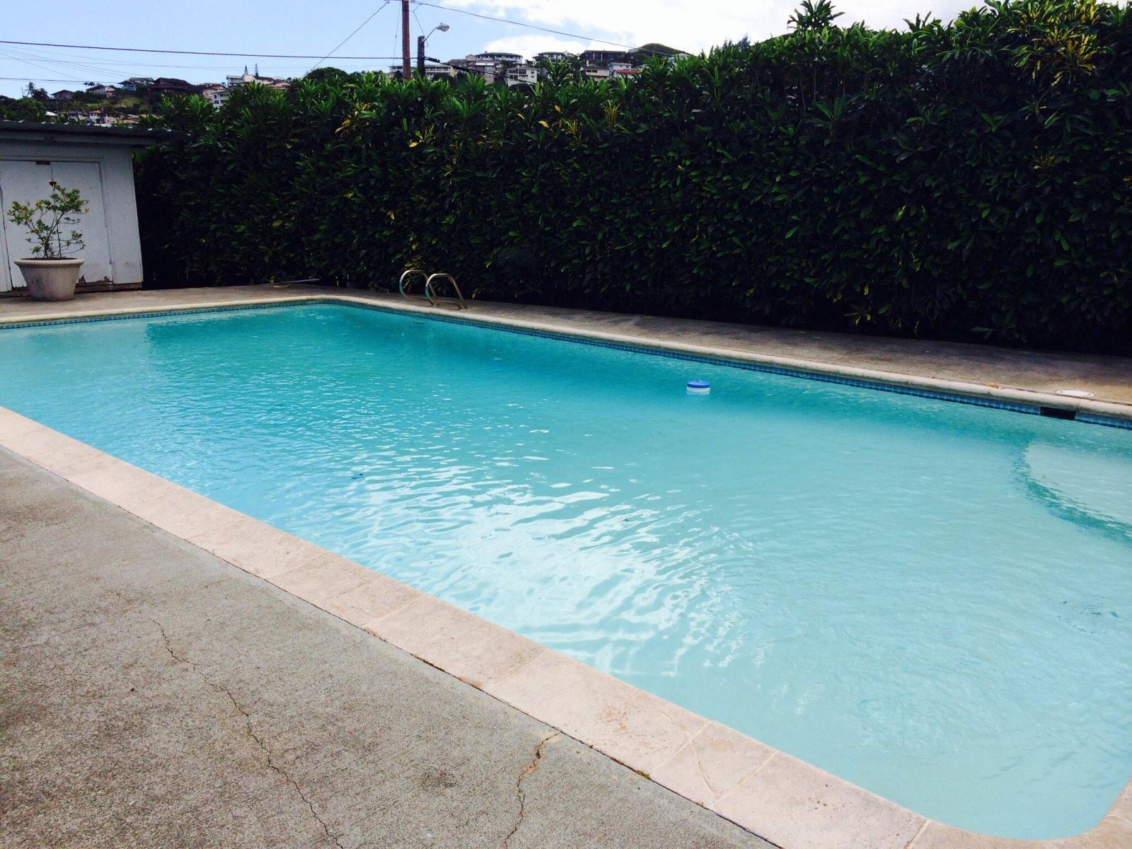 949 Kahili Street Kailua - pool