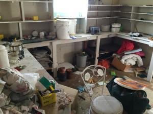 Hoarding? Fire or Flood Damage? Termite? No problem
