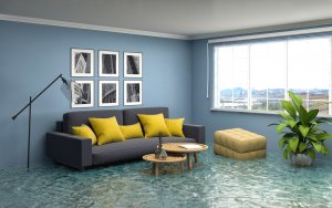 what you should do after a flood