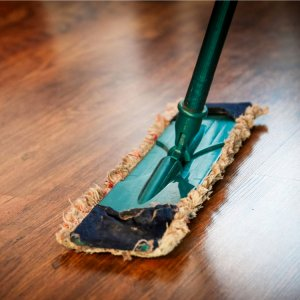 Remove Pests From Your Florida Home with a good cleaning