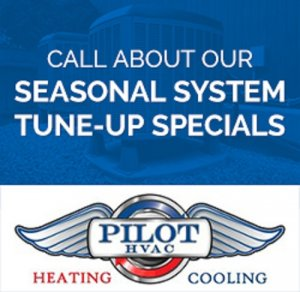 Seasonal Tune Up Special