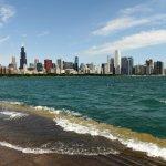 real estate niche in Chicago
