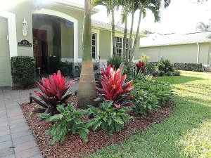 We Buy Ugly Houses Palm Springs North Florida In Any Condition