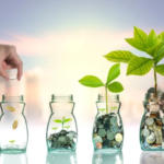 Buying Your First Investment Property - Plant