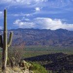 Tucson Arizona_Sell House Fast
