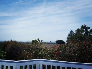view from the patio of a santa paula house