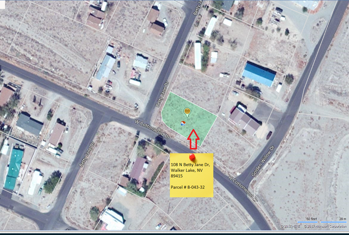 Aerial view walker lake nevada property for sale 3