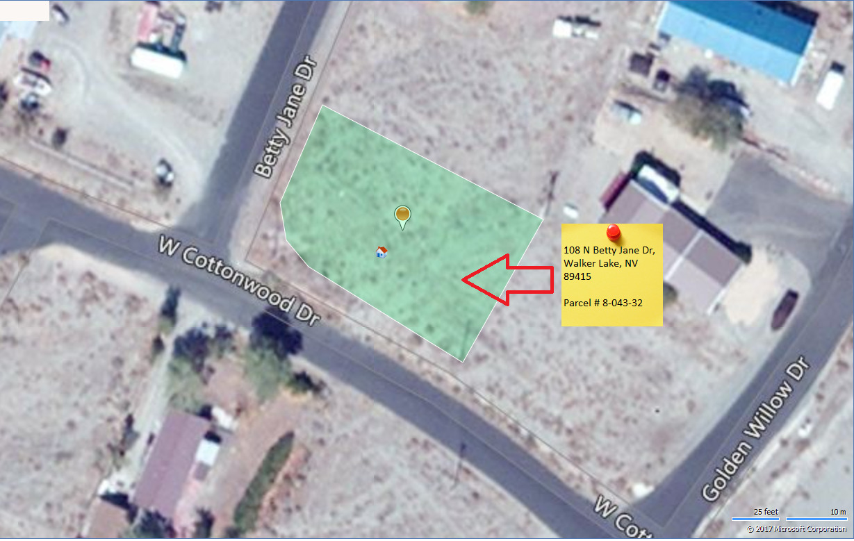 Aerial view walker lake nevada property for sale 4