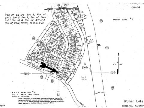 Plat map walker lake nevada property
