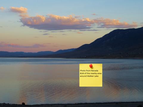 Walker-lake-photo