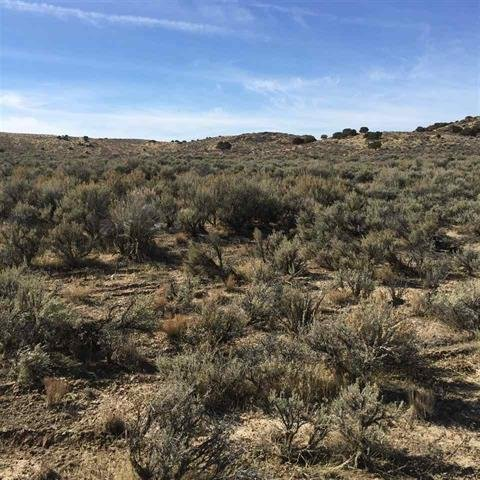 1 acre for sale Last Chance Ranch Unit 1, Elko Nevada 2