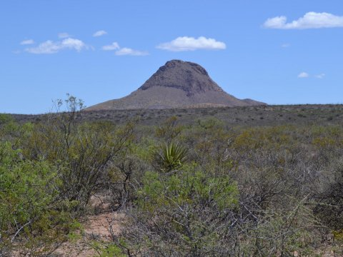 40 Acres for Sale Douglas AZ