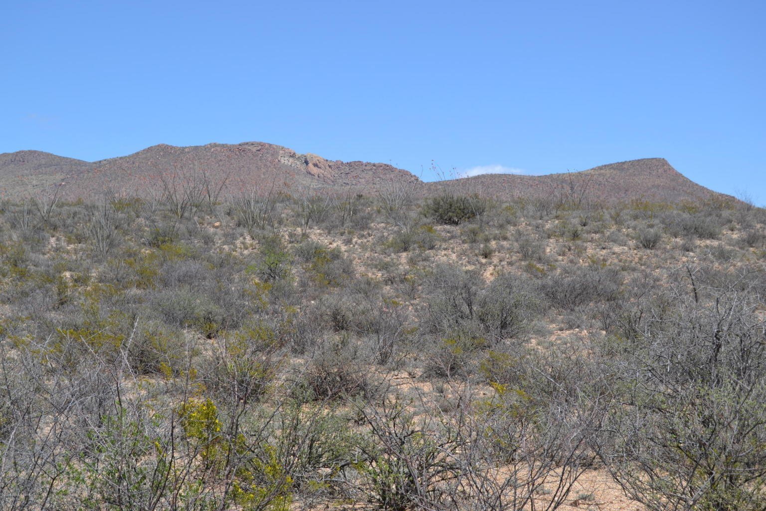 40 Acres for Sale southern AZ