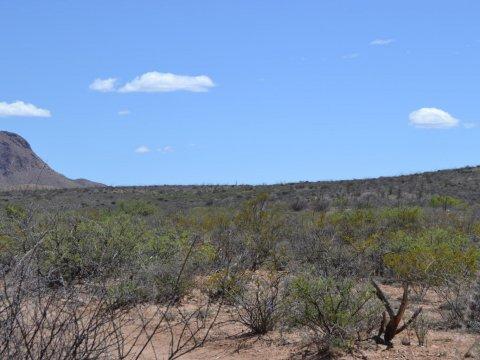 Land for Sale Douglas AZ