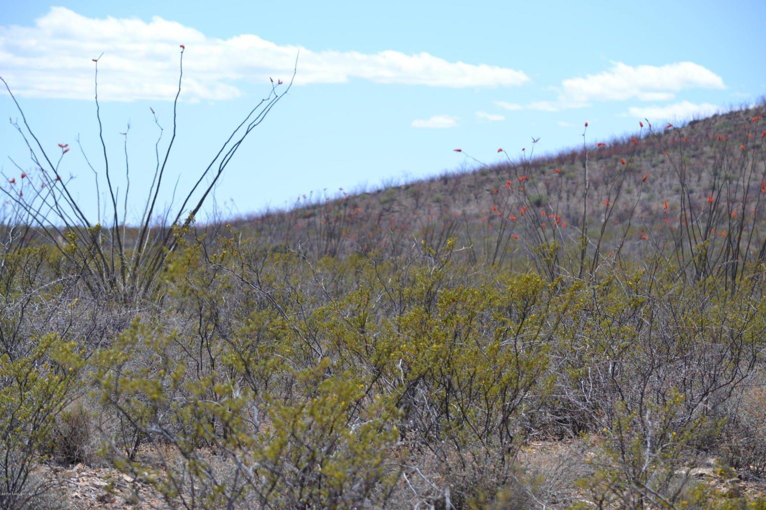 Land for Sale Douglas Arizona