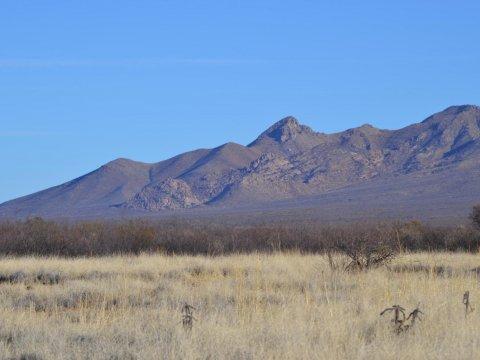 McNeal Arizona Land for sale 7