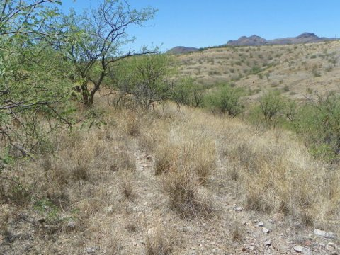 3 Acres Vacant Land for Sale Rio Rico Arizona 3