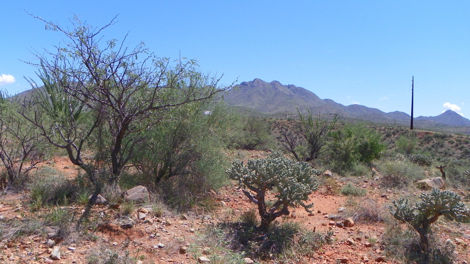 0.58 Acres, Rio Rico Arizona, pic 7