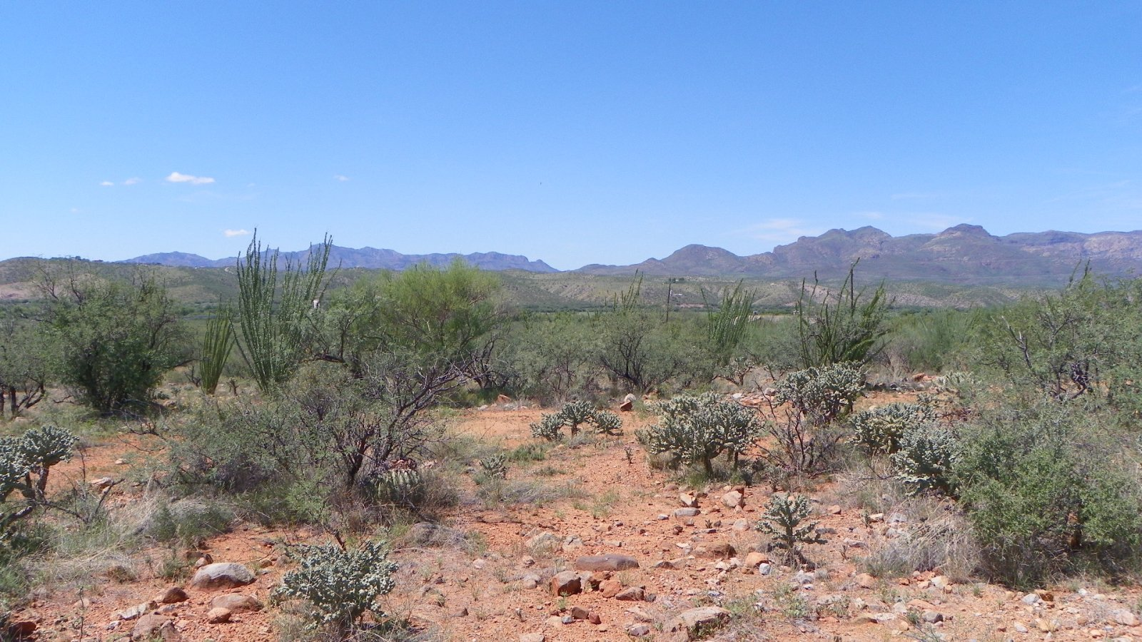 0.58 Acres, Rio Rico Arizona, pic 5