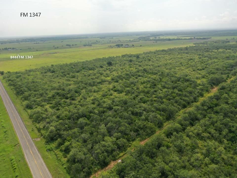 8220 FM 1347 Stockdale TX land for sale