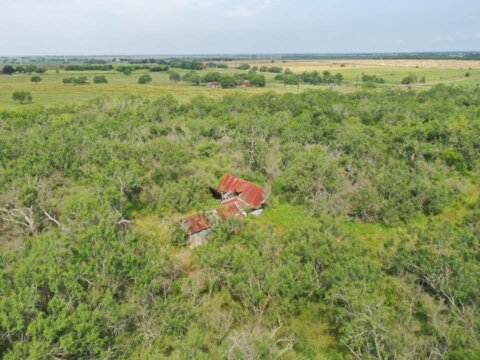 8220 FM 1347 Stockdale TX 86.76 acres for sale