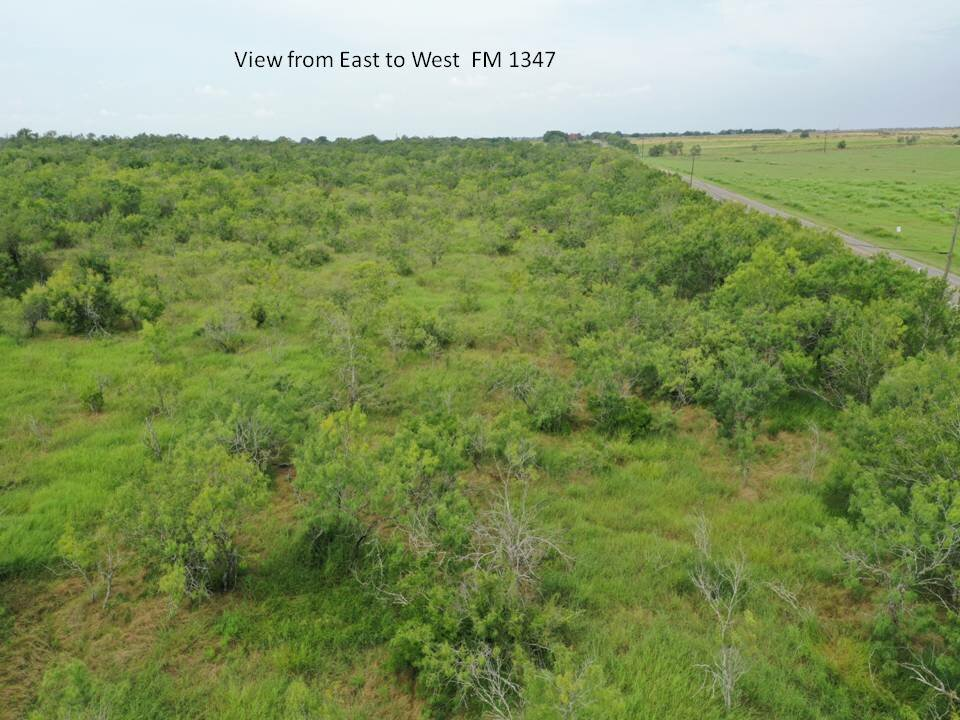 Tract 2 FM 1347 Stockdale TX 25 acres for sale