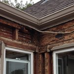 How to Sell a House with Termite Damage in Omaha